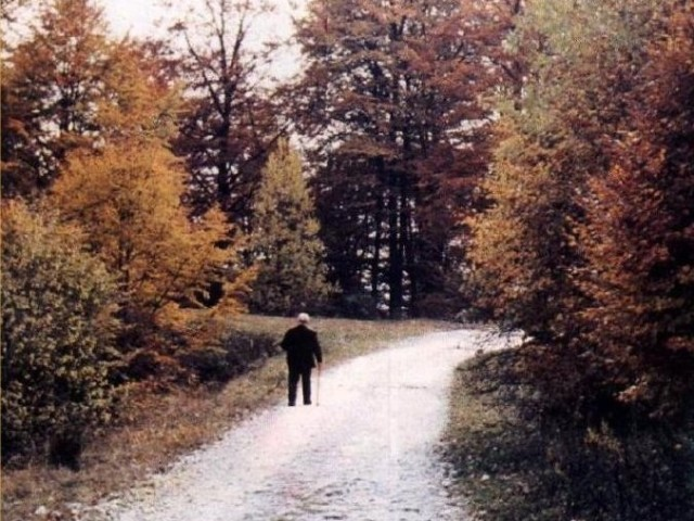 În mersul către Mâine – Traian Dorz
