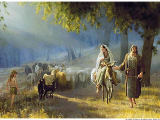 Iosif şi Naşterea Domnului – Mihai Coste