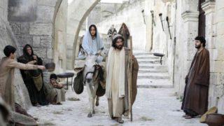 Înscrierea în cer (I)- Popa Petru (Săucani)