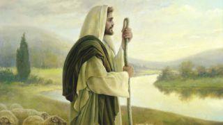 Pacea Mea o dau – Pr. Iosif Trifa
