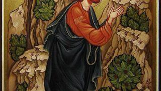 Evanghelia Duminicii a 7-a după Paști – Pr. Iosif Trifa